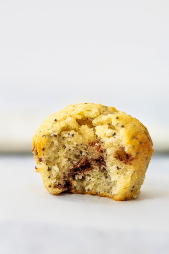 Chocolate chia seed muffin with a bite taken out