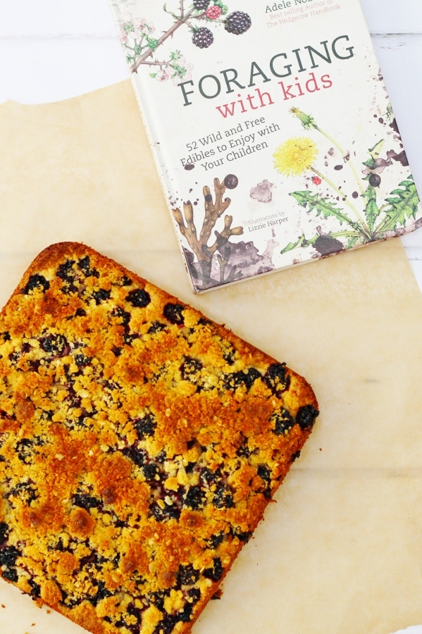 Blackberry and Coconut Tray Bake Foraging with Kids Recipe Book by Adele Nozedar